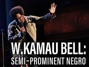 W. Kamau Bell: Semi-Prominent Negro (2016)