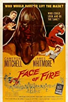 Image of Face of Fire