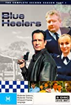 Primary image for Blue Heelers