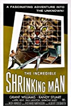 Image of The Incredible Shrinking Man
