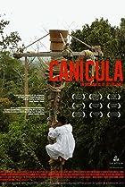 Image of Canícula