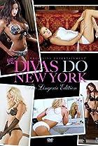 Image of WWE Divas Do New York