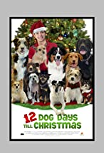 Primary image for 12 Dog Days Till Christmas