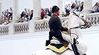 Legendary White Stallions