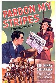 Pardon My Stripes Poster