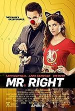 Mr Right(2016)