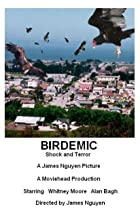 Image of Birdemic: Shock and Terror