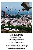 Birdemic: Shock and Terror (2010) Poster