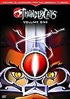 """""""Thundercats"""""""