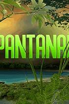 Image of Pantanal
