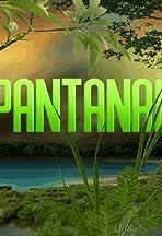 Pantanal