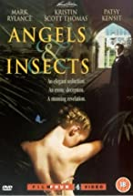 Primary image for Angels and Insects