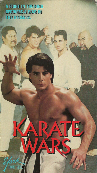 image Karate Wars Watch Full Movie Free Online