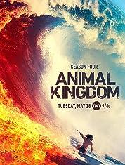 Animal Kingdom - Season 3