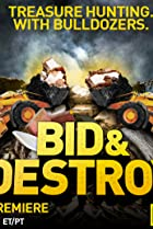 Image of Bid & Destroy