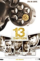 13 (2010) Poster