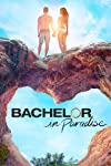 The Next Bachelor Is 'Pilot Pete' Weber