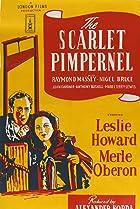 Image of The Scarlet Pimpernel