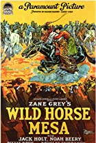 Image of Wild Horse Mesa