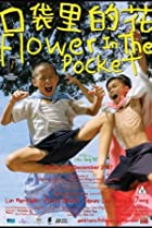 Image of Flower in the Pocket