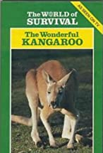 Primary image for The Wonderful Kangaroo
