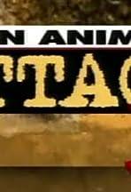 When Animals Attack 3
