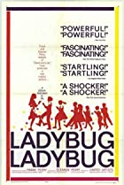 Image of Ladybug Ladybug