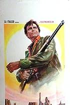 Image of A Stranger in Paso Bravo