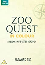 Zoo Quest in Colour
