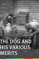 Image of The Dog and His Various Merits