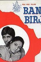 Image of Bansi Birju
