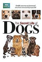 Secret Life of Dogs
