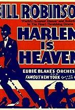 Harlem Is Heaven