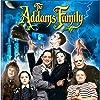 Christina Ricci, Raul Julia, Christopher Lloyd, Anjelica Huston, Christopher Hart, Judith Malina, Carel Struycken, and Jimmy Workman in The Addams Family (1991)