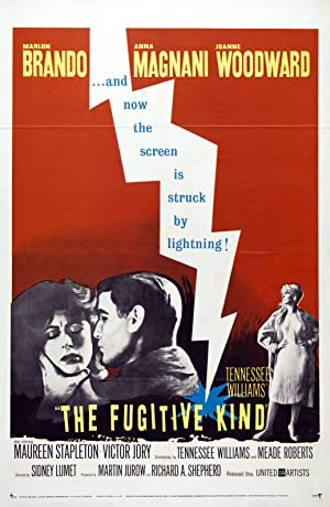 The Fugitive Kind poster