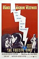The Fugitive Kind (1960) Poster
