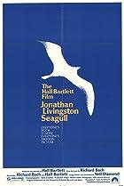 Image of Jonathan Livingston Seagull