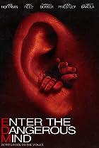 Enter the Dangerous Mind (2013) Poster