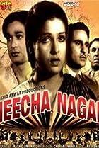 Image of Neecha Nagar