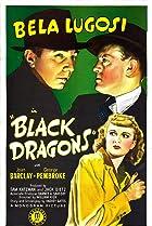 Image of Black Dragons