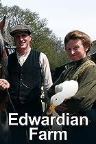 Image of Edwardian Farm