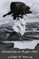 Image of Rescued from an Eagle's Nest