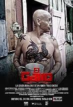 Primary image for El Gallo