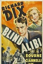 Blind Alibi Poster