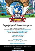 Sonic 25th Anniversary Party