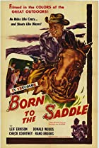 Image of Born to the Saddle