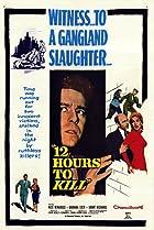 Image of Twelve Hours to Kill