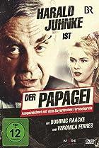 Image of Der Papagei