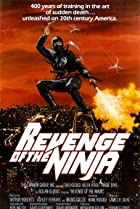 Image of Revenge of the Ninja