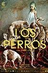 'Los Perros', 'To Let' win Kolkata Festival